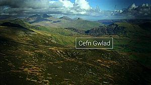Cefn Gwlad