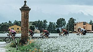 SEICLO: Giro d'Italia